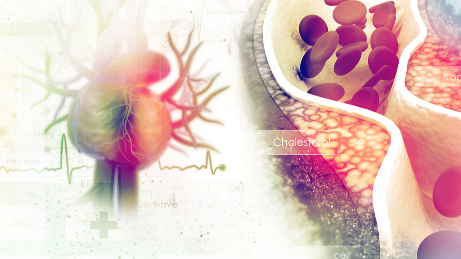 truth-about-cholesterol-heart-diseases-and-saturated-fats