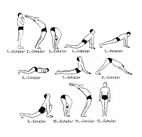Surya Namaskar Positions