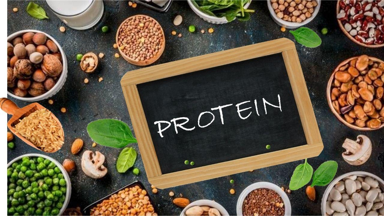 Protuf Plant Protein